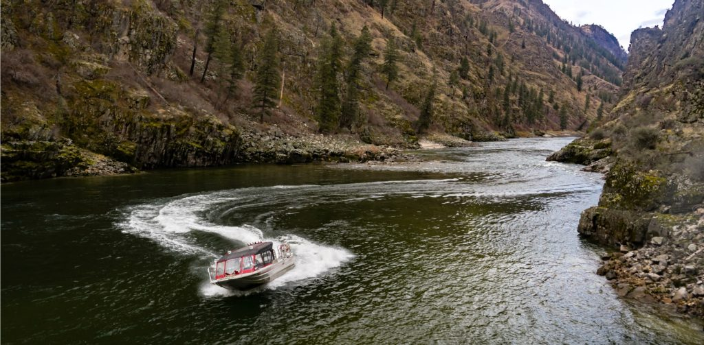 salmon river jet boat wilderness tours
